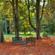 Three benches in the autumnal park. — Stock Photo