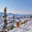 Town under the snow. Corneliano D — Stock Photo