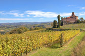 Vineyards and old castle. Piedmont, Italy. — Stock Photo