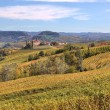 Hills and vineyards of Piedmont at fall. — Stock Photo
