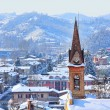 Small town covered with snow. Piedmont, Italy. — Stock Photo #15835469
