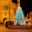 Christmas tree in front of cathedral. Alba, Italy. — Stock Photo