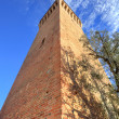 Ancient tower. Santa Vittoria D — Stock Photo