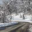 Road through snowy forest. Piedmont, Italy. — Stock Photo #18381931