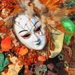 Traditional carnival mask and costume. Venice, Italy. — Stock Photo