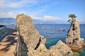 ポルトフィーノで地中海の海岸沿いの木造歩道橋. — ストック写真