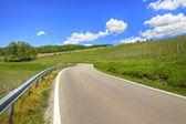 Weg door heuvels en wijngaarden. piemonte, italië. — Stockfoto