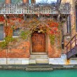 Brick house covered by vine. Venice, Italy. — Stock Photo