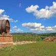 Wine barrel and vineyards in Piedmont, Italy. — Foto Stock