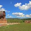 Wine barrel and vineyards in Piedmont, Italy. — Stockfoto