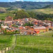 Town of Barolo among hills. Piedmont, Italy. — Stock Photo