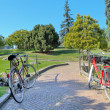 Two bikes on walkway in the park. — Stock Photo