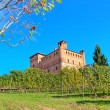 Medieval castle and vineyards in Piedmont, Italy. — Zdjęcie stockowe