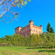 Medieval castle and vineyards in Piedmont, Italy. — Foto Stock