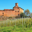 Old castle and vineyards in Piedmont, Italy. — Stock Photo
