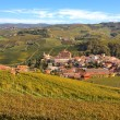 Autumnal view of vineyards and Barolo in Piedmont, Italy. — Stock Photo