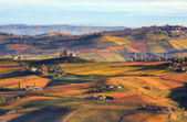 Hills and vineyards in autumn in Italy. — Stock Photo