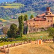 Old castle and vineyards in Piedmont, Italy. — Stock Photo #31896501