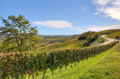 Fields and vineyards in Piedmont, Italy. — Stock Photo