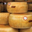 Wheels of Parmesan cheese. — ストック写真