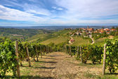 Vineyards on the hills and small town in Italy. — Stock Photo