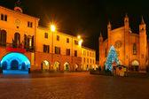 Árbol de Navidad en la plaza central. Alba, Italia. — Foto de Stock