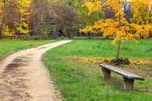 Patika ve tezgah sonbahar Park. — Stok fotoğraf