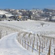 Vineyards of Piedmont covered with snow. — Stock Photo
