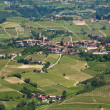 Stock Photo: Green hills and vineyards of Piedmont, Italy.