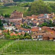 Stock Photo: Town of Barolo and green vineyards of Piedmont.
