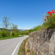 Road, green hills and red poppies. — Stock fotografie