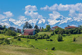 Green fields and snowy mountains in Piedmont, Italy. — Stock Photo