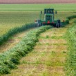 Combine on agricultural field during crop harvesting. — Stock Photo