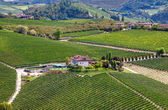 Winery and green vineyards on the hill in Italy. — Stock Photo
