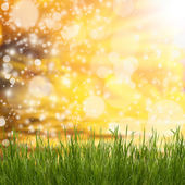 Spring natural background — Stock Photo