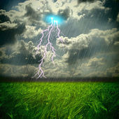 The weat and storm field and hard rain — Stock Photo