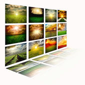 Beautiful fields collage — Stock Photo