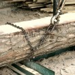 Large industrial Chain on Log — Stockfoto #12891079