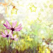 美しい花と前面に太陽と緑の芝生 — ストック写真