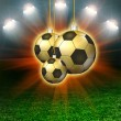 Soccer green field with hollyday light — Stock Photo