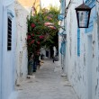 Hammamet i — Stock Photo #13686197