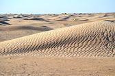 The Sahara Desert in Africa — Stock Photo