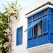 Sidi Bou Said — Stockfoto