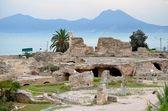 Carthage — Stock fotografie