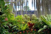 Nong Nooch Tropical Garden — Stock Photo