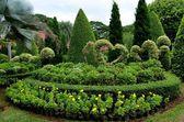 Giardino tropicale di nong nooch — Foto Stock