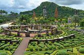 Nong nooch tropisk trädgård — Stockfoto