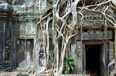 Ancient Cambodian temple — Foto de Stock