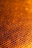 Honeycomb with honey and wax — ストック写真