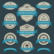 Vintage labels and ribbons retro style set. Vector design elements. — Imagens vectoriais em stock
